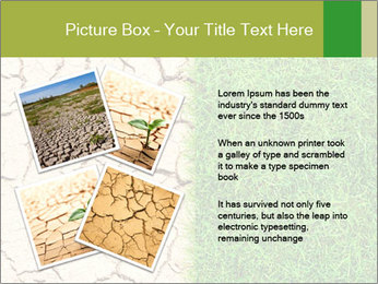 Half the frame PowerPoint Template - Slide 23