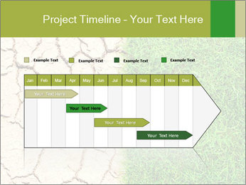 Half the frame PowerPoint Template - Slide 25