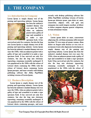 0000093404 Word Template - Page 3