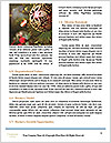0000093404 Word Templates - Page 4