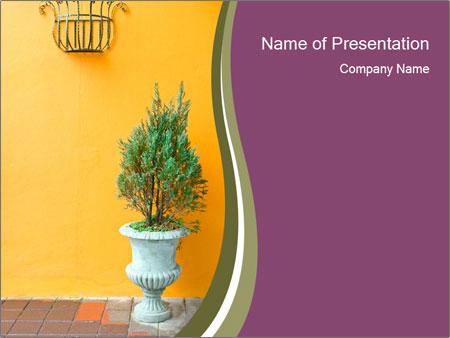 Green plants PowerPoint Templates
