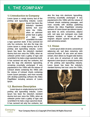 0000093410 Word Template - Page 3