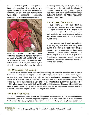 0000093410 Word Template - Page 4
