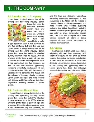 0000093411 Word Template - Page 3