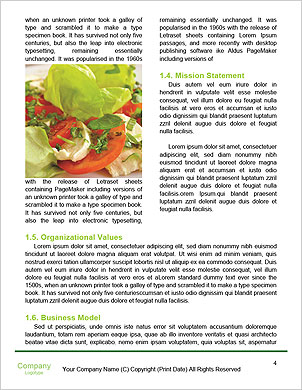 0000093411 Word Template - Page 4