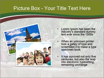 Ceremony of Asmat people PowerPoint Template - Slide 20
