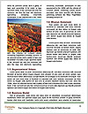 0000093421 Word Templates - Page 4