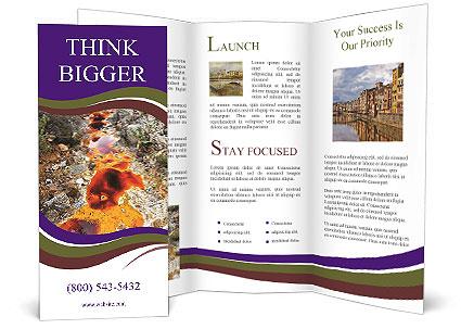 0000093429 Brochure Template