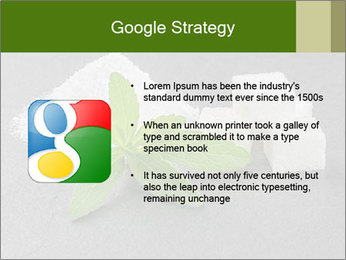Stevia leaves PowerPoint Templates - Slide 10