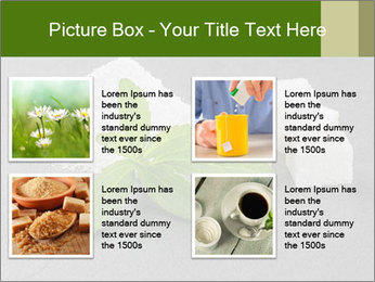 Stevia leaves PowerPoint Templates - Slide 14