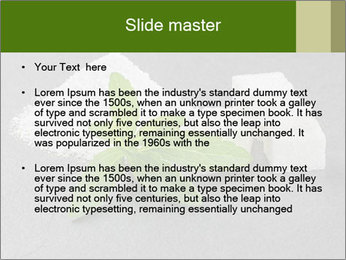 Stevia leaves PowerPoint Templates - Slide 2