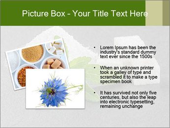 Stevia leaves PowerPoint Templates - Slide 20