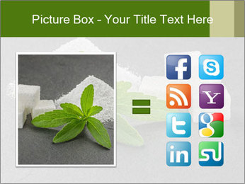 Stevia leaves PowerPoint Templates - Slide 21