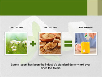 Stevia leaves PowerPoint Templates - Slide 22