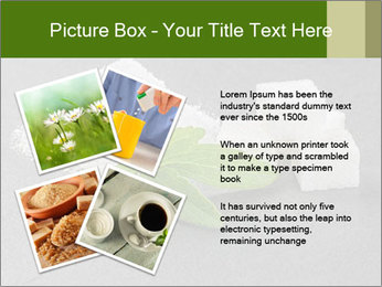 Stevia leaves PowerPoint Templates - Slide 23