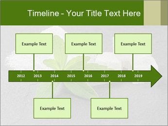 Stevia leaves PowerPoint Templates - Slide 28