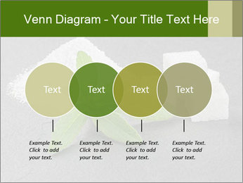 Stevia leaves PowerPoint Templates - Slide 32