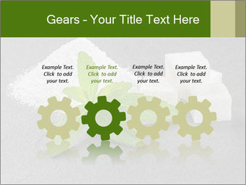 Stevia leaves PowerPoint Templates - Slide 48
