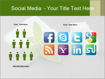 Stevia leaves PowerPoint Templates - Slide 5