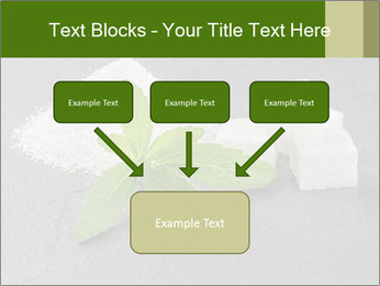 Stevia leaves PowerPoint Templates - Slide 70