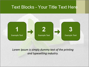 Stevia leaves PowerPoint Templates - Slide 71