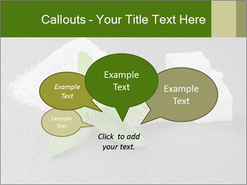Stevia leaves PowerPoint Templates - Slide 73
