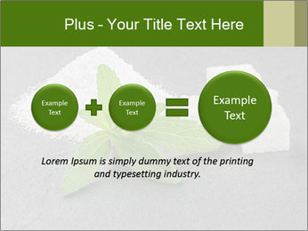 Stevia leaves PowerPoint Templates - Slide 75