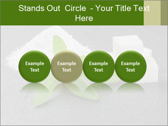 Stevia leaves PowerPoint Templates - Slide 76