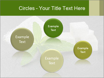 Stevia leaves PowerPoint Templates - Slide 77