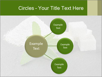 Stevia leaves PowerPoint Templates - Slide 79