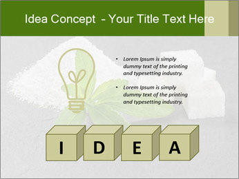 Stevia leaves PowerPoint Templates - Slide 80
