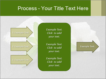 Stevia leaves PowerPoint Templates - Slide 85