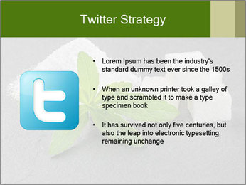 Stevia leaves PowerPoint Templates - Slide 9