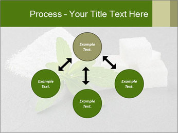 Stevia leaves PowerPoint Templates - Slide 91