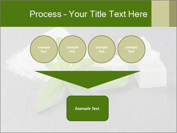 Stevia leaves PowerPoint Templates - Slide 93