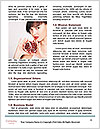 0000093433 Word Templates - Page 4