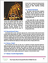 0000093436 Word Template - Page 4