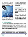 0000093449 Word Template - Page 4