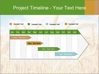 Gold wheat PowerPoint Templates - Slide 25