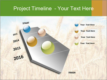 Gold wheat PowerPoint Templates - Slide 26