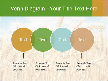 Gold wheat PowerPoint Templates - Slide 32