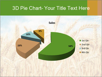 Gold wheat PowerPoint Templates - Slide 35