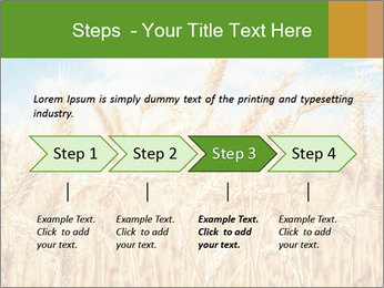 Gold wheat PowerPoint Templates - Slide 4