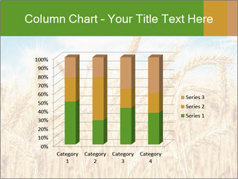 Gold wheat PowerPoint Templates - Slide 50