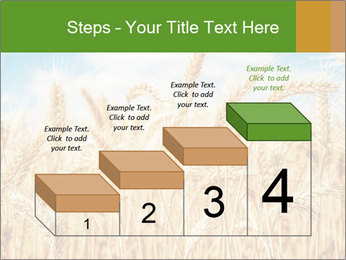 Gold wheat PowerPoint Templates - Slide 64