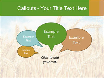 Gold wheat PowerPoint Templates - Slide 73