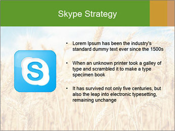 Gold wheat PowerPoint Templates - Slide 8