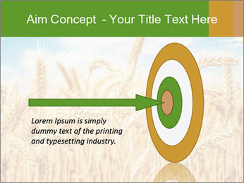 Gold wheat PowerPoint Templates - Slide 83
