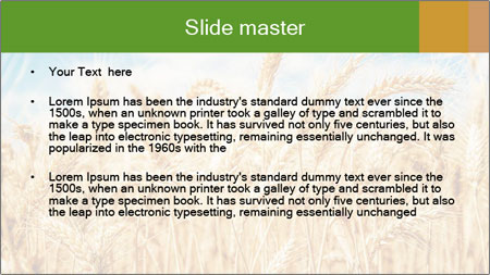 Gold wheat PowerPoint Template - Slide 2
