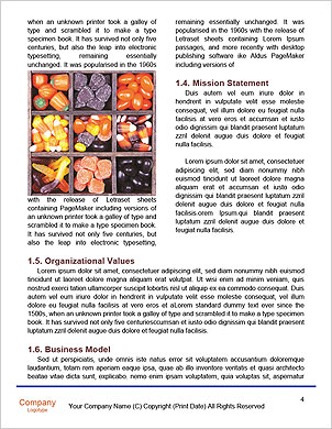 0000093458 Word Template - Page 4